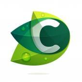 C letter with green leaves and dew drops Vector design template elements