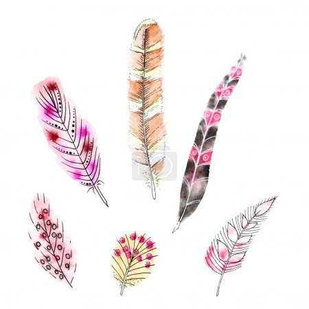 Illustration for Set of six watercolors feathers. Vector illustration - Royalty Free Image