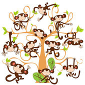 Funny monkey in a tree