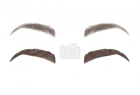Vector eyebrows, realistic and cartoon style