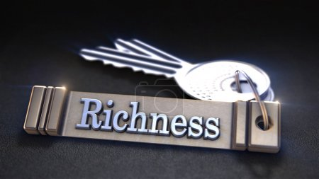 Richness Concept