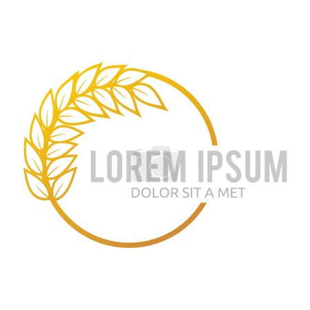 Wheat Logo Abstract Market Plant Product Design