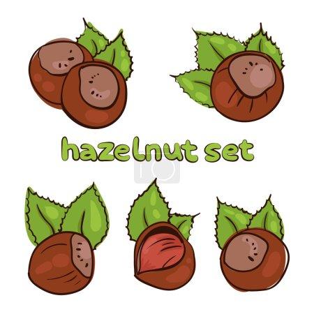 nuts frame 1