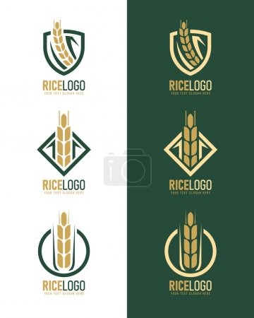 Illustration pour Gold green rice logo with modern paddy rice in frame style vector collection design - image libre de droit