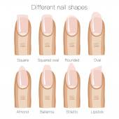 Set of different shapes of nails