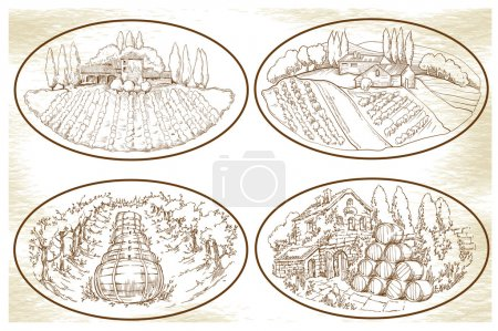 Illustration pour Croquis fait à la main des champs de raisin et des vignobles. Fabriqué dans un style vintage . - image libre de droit