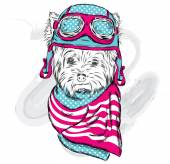 Cute puppy vector Yorkshire Terrier wearing a helmet The pilot or driver