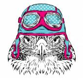 Bird in a helmet Pilot or biker Vector illustration for greeting card poster or print on clothes