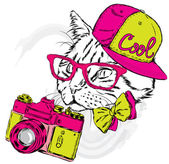 Funny cat in a cap and with a camera Vector illustration Print for cards posters or odzhdy