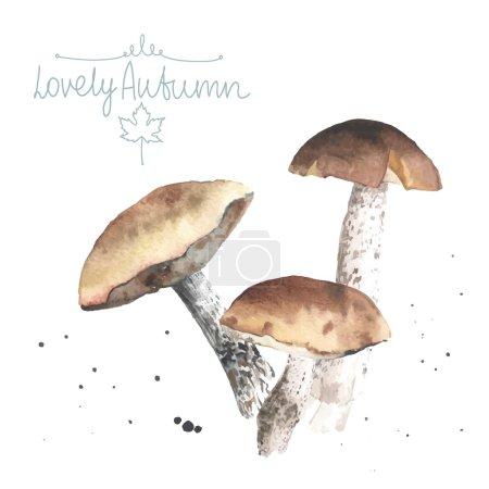 Illustration pour Ensemble de champignons aquarelle. Casquette bolet marron. Tout objet fabriqué en vecteur. Chacune est séparée . - image libre de droit