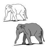 Graphic image of a large elephant The picture of a gray elephant on a white background The contour of the animal Vector illustration of (set of two drawings)