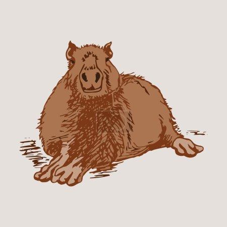 Large capybara lies 1
