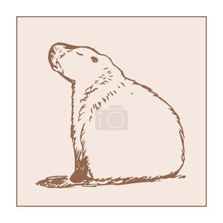 Large capybara sits 0