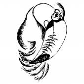 A graphical sketch of the bird Black and white (chess dominoes) Vector