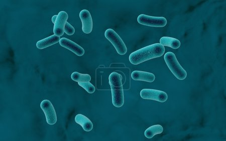 Bacteria on colorful background