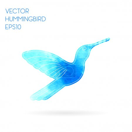Hand drawn watercolor and sketch style hummingbird. Vector Illustration EPS10.