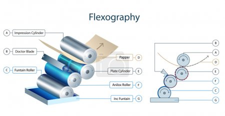 Flexography printing mechanism infographic