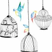 set hand-painted birdcages  birds  leaves watercolor rainbow