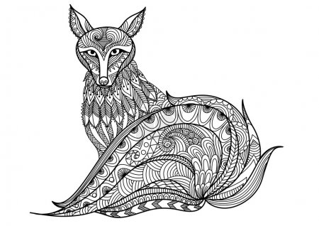 Red fox line art design for coloring book for adult, tattoo, t shirt design and element for designs