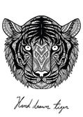 Unique hand drawn tiger for T-Shirt designmug designcoffee cup designhand bag designpillow design and so on - Stock vector