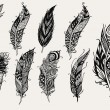Set of hand drawn rustic decorative feathers...