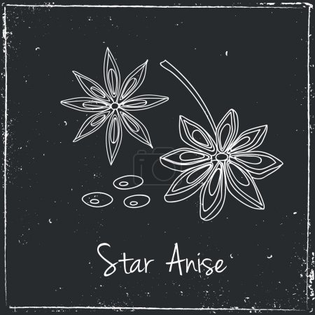 Star Anise, Herbs and Spices.