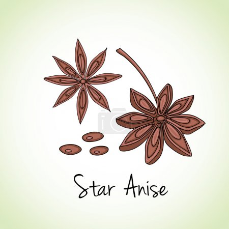 Star Anise Herbs and Spices.