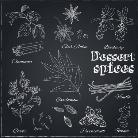 Hand drawn set with Herbs and Spices