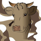 Vector illustration of gray cow