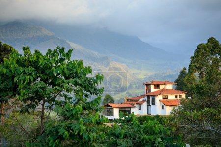Photo pour Une maison dans les montagnes, jungle verte dans les montagnes, colombie, Amérique latine - image libre de droit