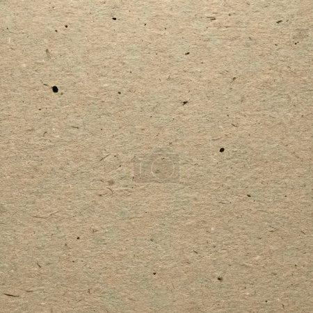 Cardboard Texture. Carton paper.