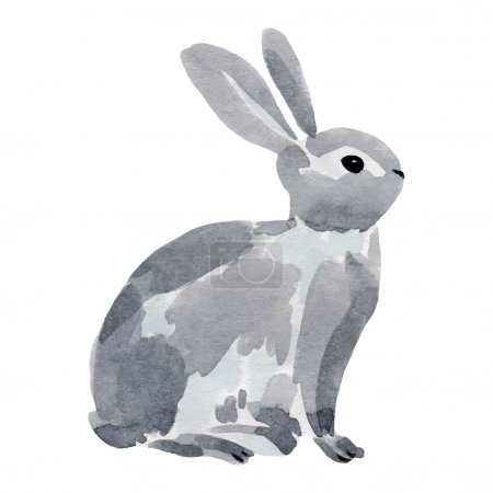 Illustration for Watercolor illustration of a rabbit. Vector hand drawn illustration - Royalty Free Image