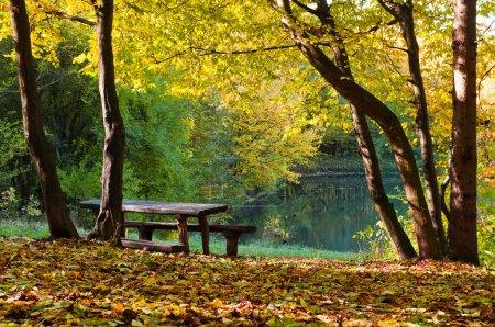 Lago en bosque de otoño