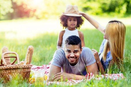 Family enjoying picnic outing