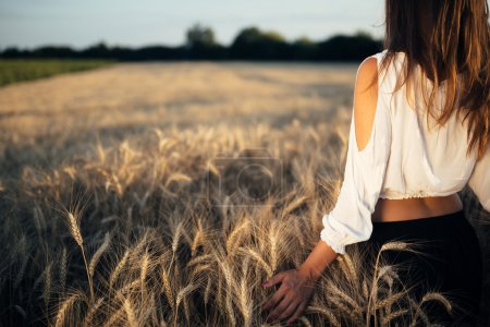 Photo for Rear view of beautiful romantic woman in golden field of barley - Royalty Free Image