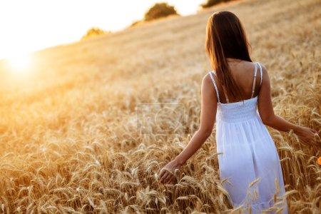 Photo pour Vue arrière du romantique femme marchant dans les champs d'or de l'orge - image libre de droit