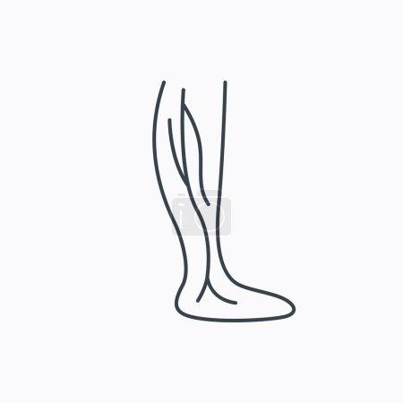 Phlebology icon. Leg veins sign.