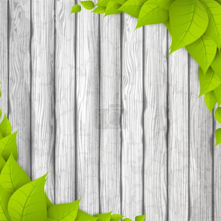 Eco Background. Green leaves