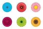 Circle Flowers Pattern