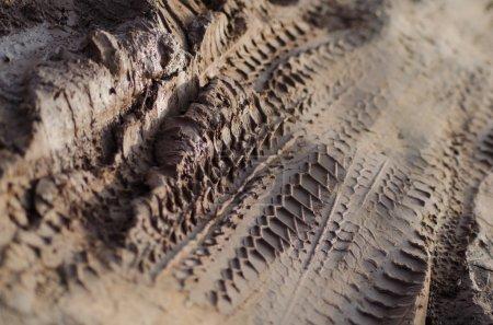 Photo pour Moyen Gros plan des pistes de moto et de voiture dans la boue. La texture de boue brune est encore partiellement humide et n'a pas encore séché . - image libre de droit