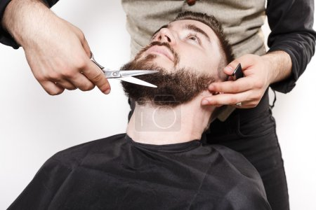 Photo for Portrait of a brutal bearded customer getting his beard cut by a hairdresser, with scissors and black comb, on a white background, in studio, close up - Royalty Free Image