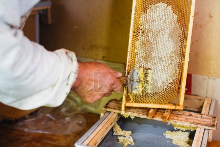 Beekeeper with special equipment