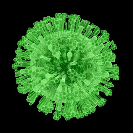 An illustration of the isolated H1N1 Virus, common...