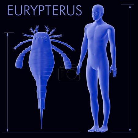 Eurypterus And Human Size Comparison
