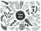 Set of vector vintage floral elements
