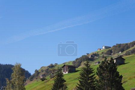 Photo pour Suisse, Grisons, Alpes, Vallée du Vals, alpage - image libre de droit