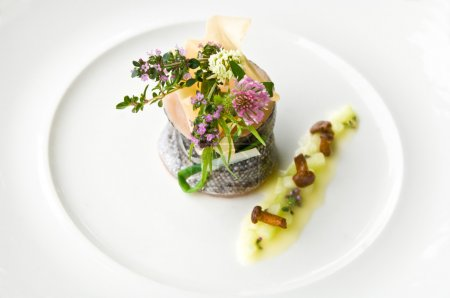 Samlet with mushrooms and herbs on plate, elevated view