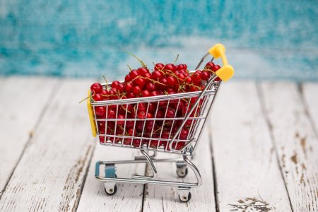 Miniature shopping cart with redcurrants