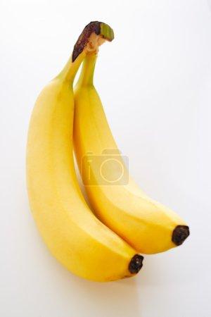 Two fresh and ripe bananas