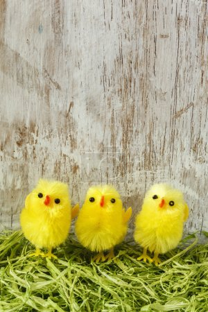 Easter  decoration with chick figurines